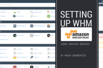 setting up whm in aws