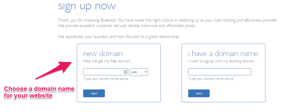 Bluehost choose domain name